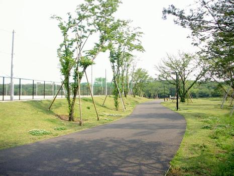 大泉多目的公園(練馬)
